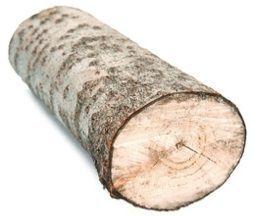 Cortando un tronco...